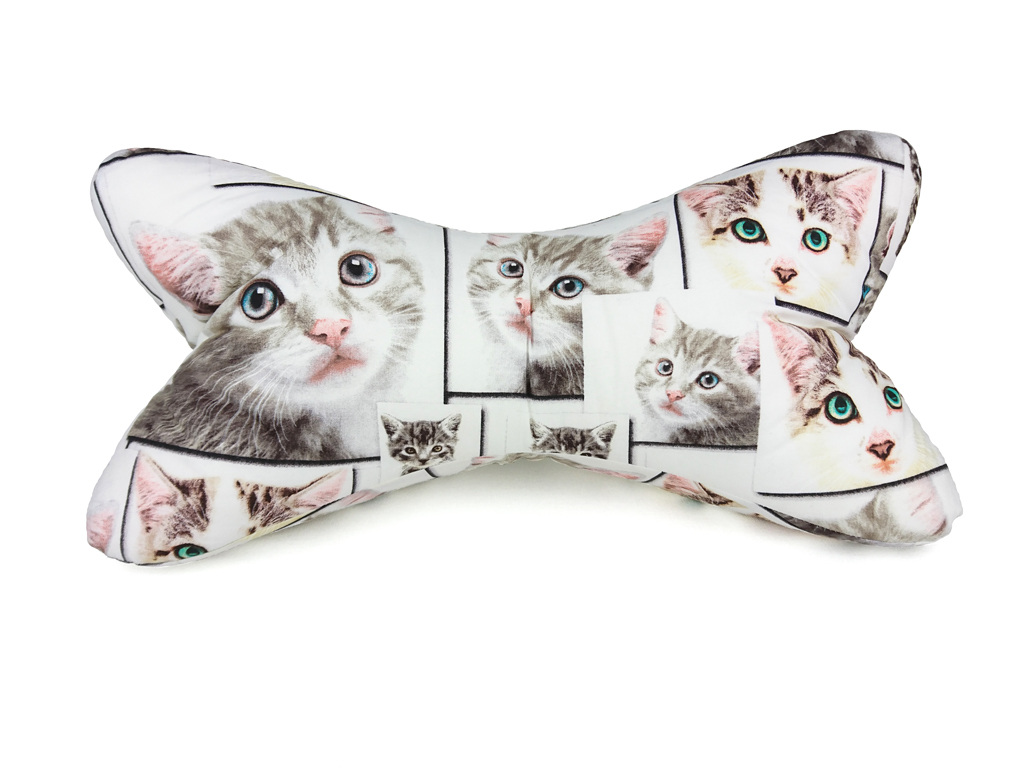 Leseknochen – Katze